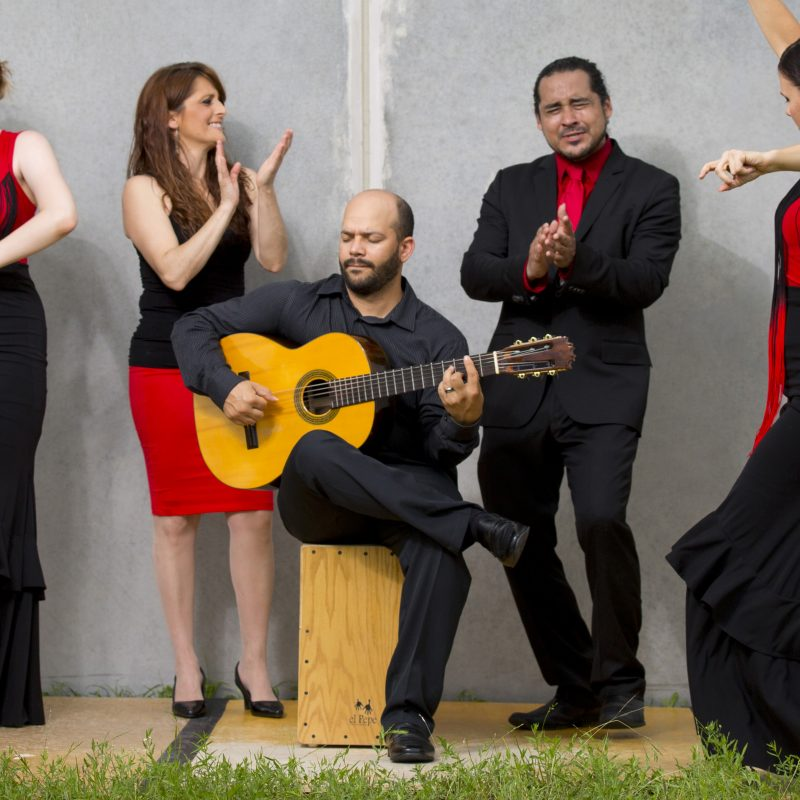 A`lante Flamenco Dance Ensemble